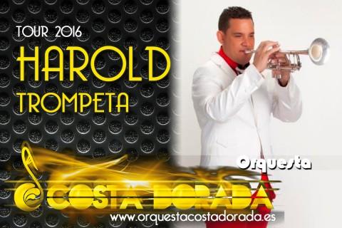 presentacion-HAROLD